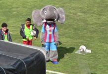 La mascotte del Catania