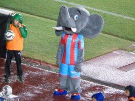Mascotte Calcio Catania